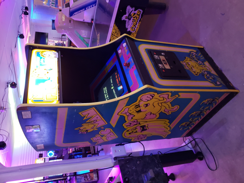 Picture of Ms. Pac-Man