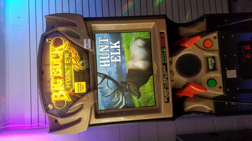 Picture of Big Buck Hunter Pro